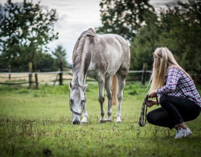 equitazione_oetzral_tirolo.jpg