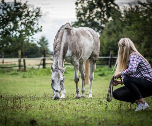 equitazione_oetzral_tirolo_1.jpg
